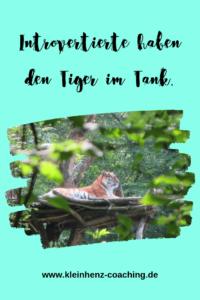 Intros haben den Tiger im Tank