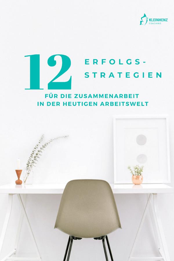 12 Erfolgsstrategien
